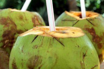 L'eau de noix de coco un super aliment essentiel à une saine santé