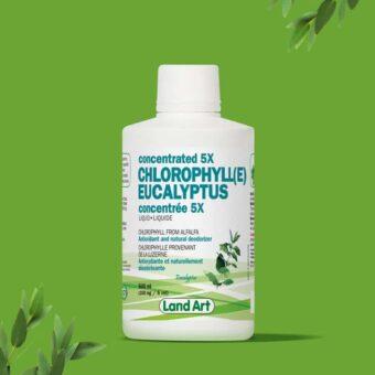 Acheter chlorophyll-5x-eucalyptus