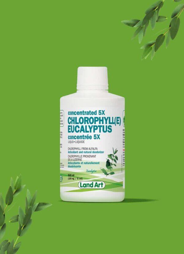 chlorophyll 5x eucalyptus 1024x1024 1