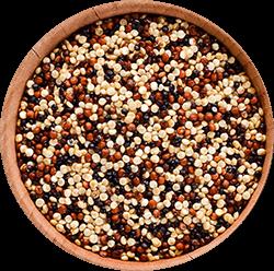 quinoa 250